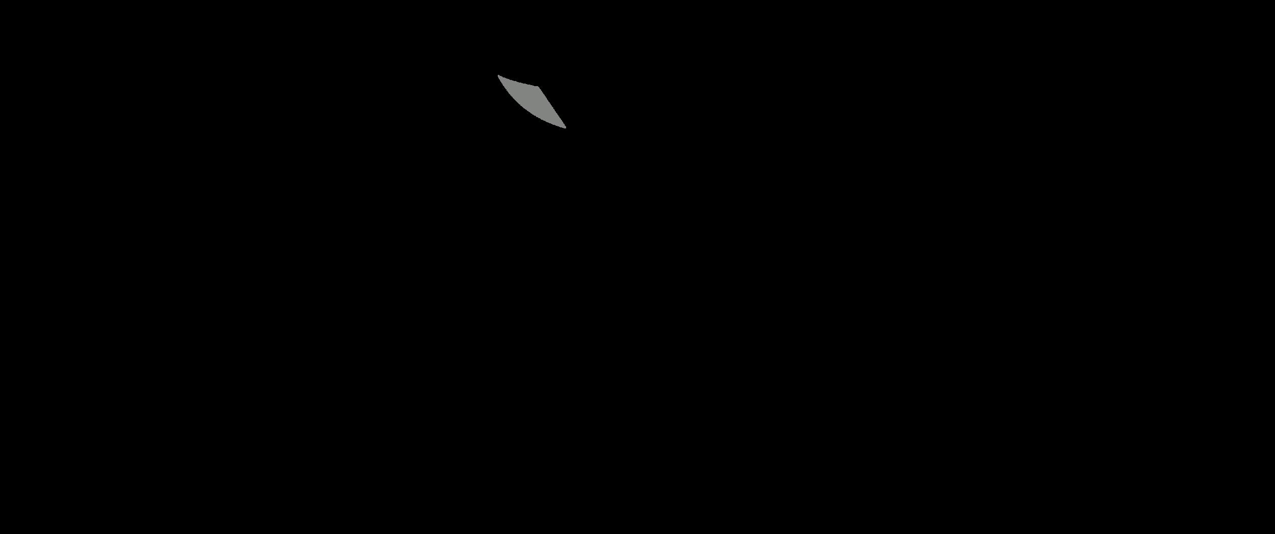 Remarkables FC logo